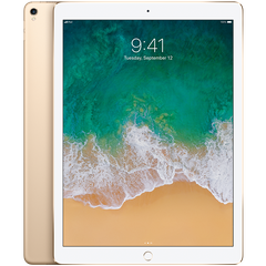 Apple iPad Pro 12,9 (MQDD2RK/A)