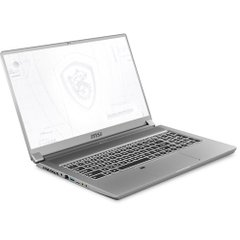 MSI WS75 Series Mobile Workstation (WS75 10TK-468)